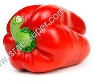 Holland Red Bell Peppers LB.